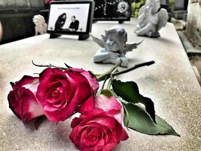 ורד על מצבה בבית הקברות פר לשז שברובע ה-20 בפריז.