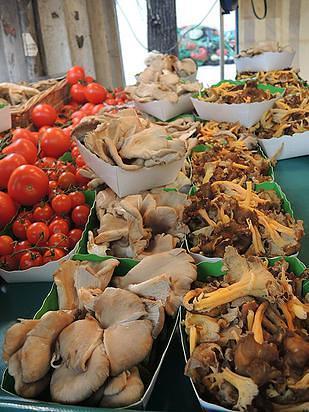 השווקים של פריז – שוק גרנל מאת גל שטיינר