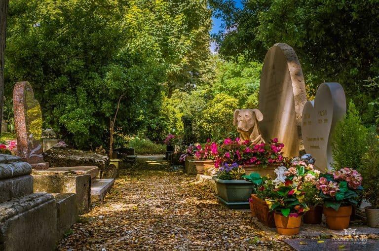 בית הקברות באנייר. צילם: Tommie Hansen