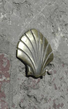 הצדפות של סנטייאגו דה קומפוסטלה