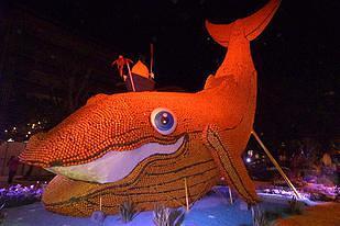 """לוויתן בקרנבל של ניס - צילמה ד""""ר הדסה גורוחובסקי"""