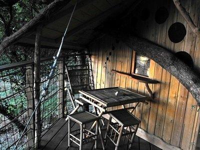 קמפינג בצמרות העצים בפואטו שארנט מאת זיוה רענן