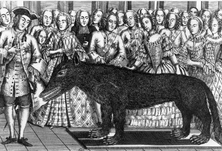 פרנסואה אנטואן מציג את גופתו של הזאב הגדול בחצרו של לואי ה-15