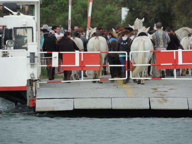 מעבורת עם סוסים