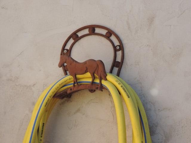 והנה עוד סוס