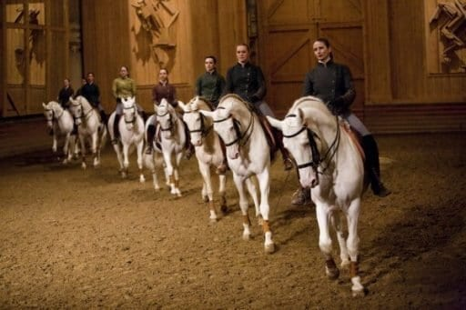מופעי רכיבה על סוסים באורוות של ארמון וורסאי