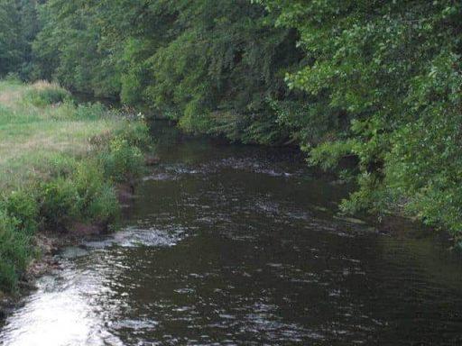 נהר הוולון (Vologne) בו נמצאה גופתו של גרגורי ווילמן. מקור צילום: ויקיפדיה.