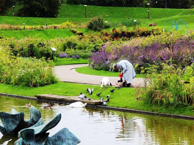 פארק הפרחים