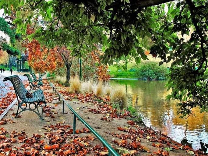 פארק מונסורי