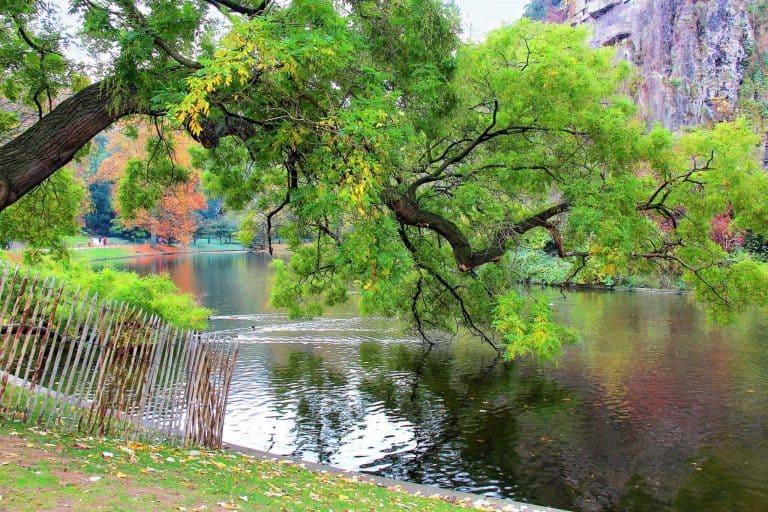 15 פארקים, גנים ויערות בפריז שאתם מוכרחים להכיר מאת יואל תמנליס
