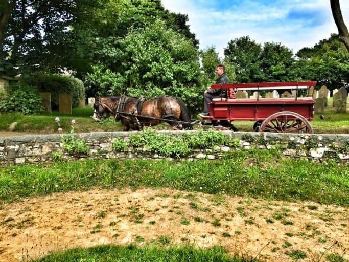 כרכרה עם סוס, הדרך המועדפת והכיפית ביותר להתנייד בסארק.