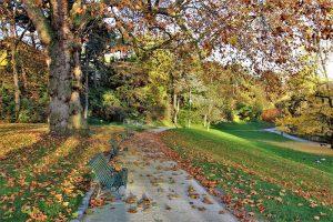 הרובע ה-14. פארק מונסורי. של פריז. צילם: יואל תמנליס