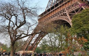 הרובע ה-7 של פריז. מגדל אייפל. צילם: יואל תמנליס
