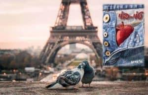 מסלול טיול בפריז בעקבות הספר טוי בוי מאת גל ברקן. צילום: Fabrizio Verrecchia
