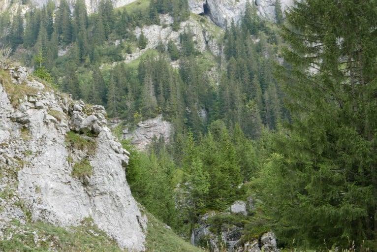 האלפים הצרפתיים. צילום: יעל סולימן