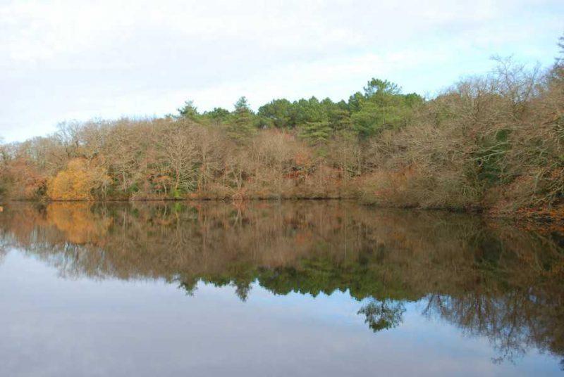 האגם ליד הטירה Plessis Josso. צילום: דני אשכנזי.