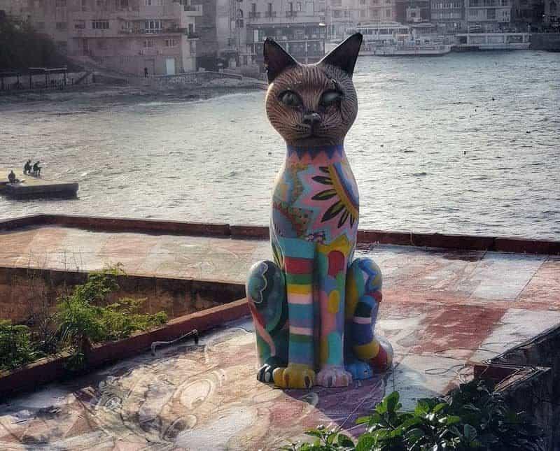 פסל של חתול על גג מקלט החתולים בעיירה סלימה שבמלטה