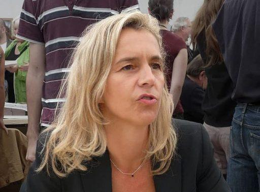 דלפין דה ויגאן - מקור צילום: ויקיפדיה.