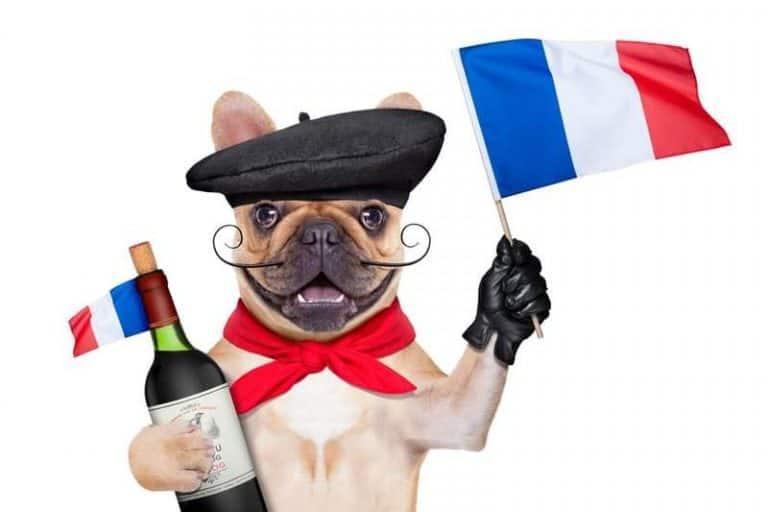 טיסות לצרפת – לאילו ערים ניתן לטוס ישירות ובזול?
