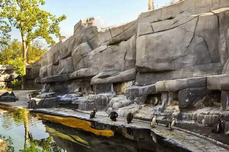 גן החיות של פריז. צילם: יואל תמנליס.