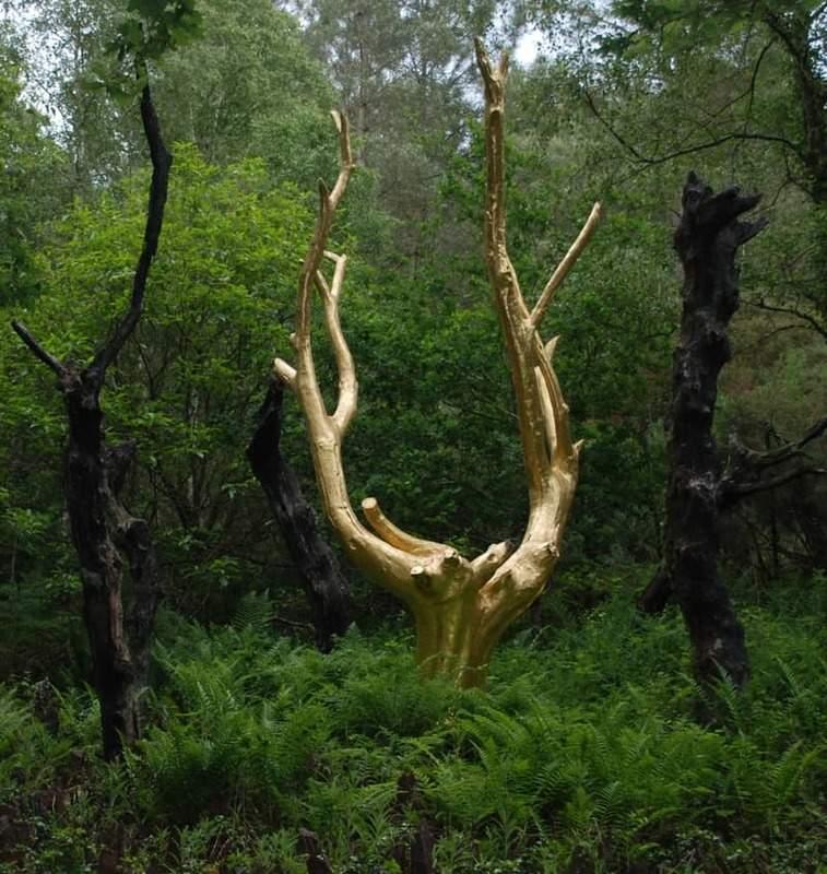 עץ הזהב