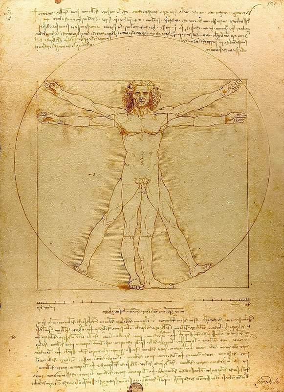 האדם הויטרובי. מקור צילום: ויקיפדיה.