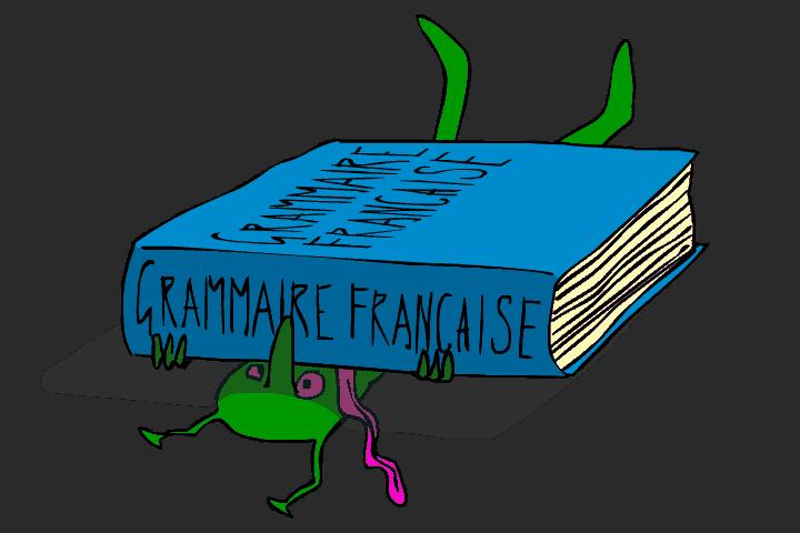 גם Frantastique מבינים שהדקדוק הצרפתי הוא תיק לא קטן.