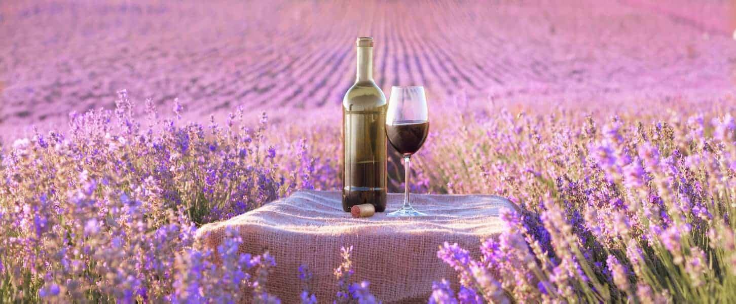 סיורי יין בפרובאנס