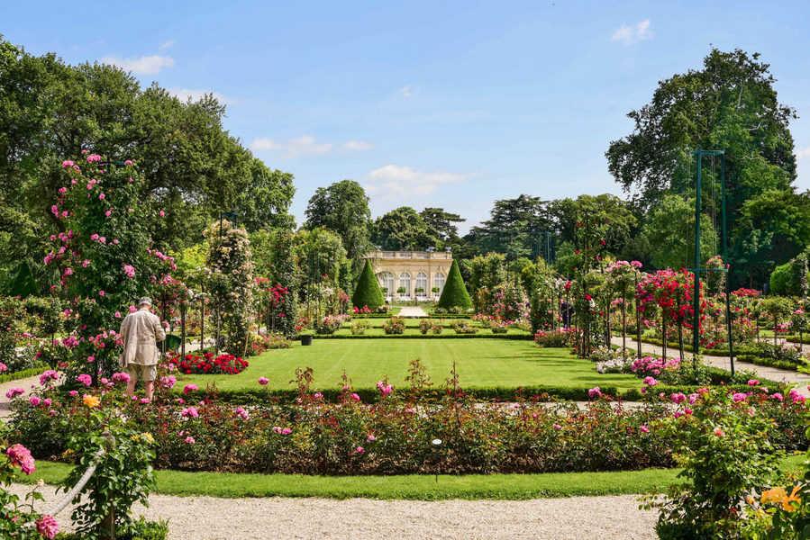 באגאטל. גן הורדים והארמון. צילם: יואל תמנליס