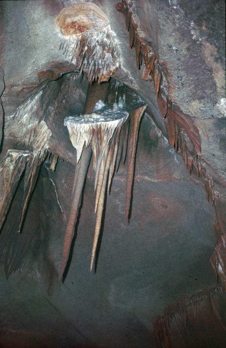 Grotte de la Cocaliere. צילם: יוסי דרורי