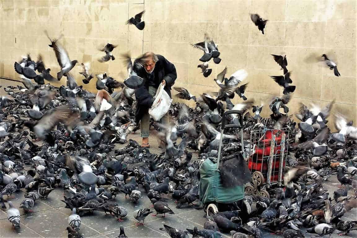 החיים ברחוב הפריזאי. צילם: יואל תמנליס