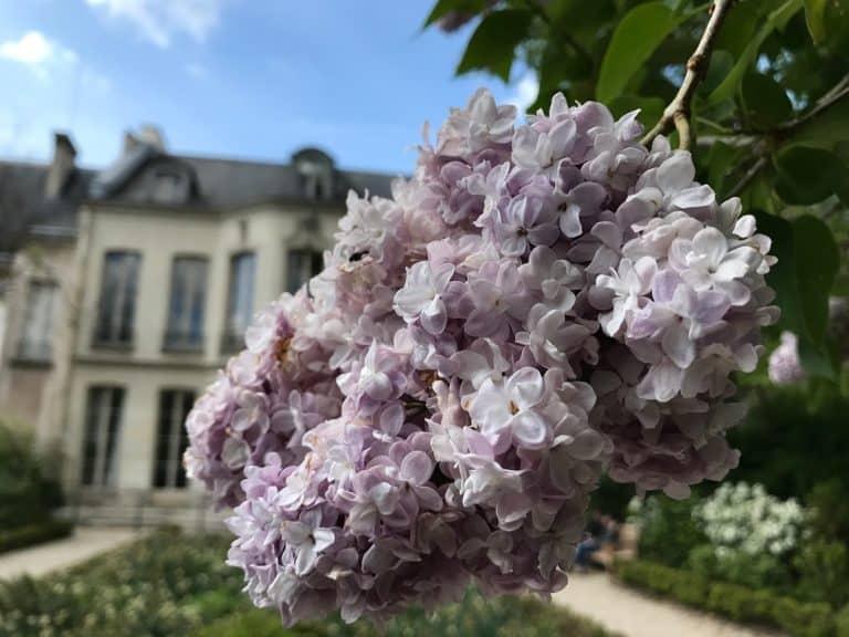 """ימי המורשת (Journées du Patrimoine) או ה""""בתים מבפנים"""" של פריז"""