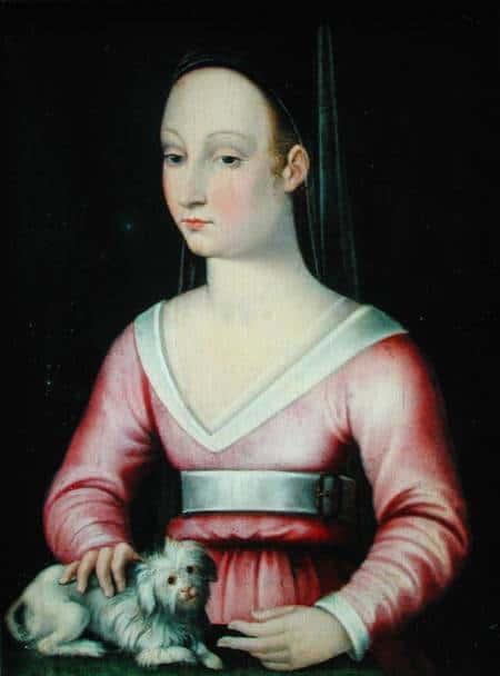 תמונה של אנייס סורל שצויירה במהלך המאה ה-16, זמן רב אחרי מותה.