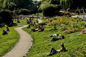 פארק בלוויל היפה