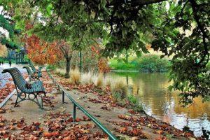 ספסלים בפארק מונסורי