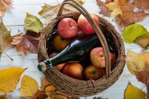 דרך הסידר של נורמנדי מסלול בעקבות תפוחים ואלכוהול מאת יוסי דרורי